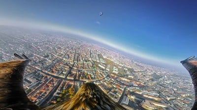 , Eagles with cameras in the skies over Vienna work for the Vienna Tourist Board, Buzz travel | eTurboNews |Travel News