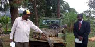 Tourism Minister sizes up man-eating crocodile