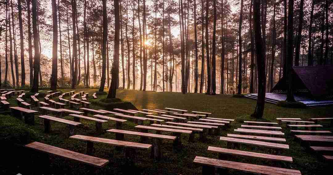 , Good Music  and Nature Indonesian Style: ForestraMusic Festival, Buzz travel | eTurboNews |Travel News