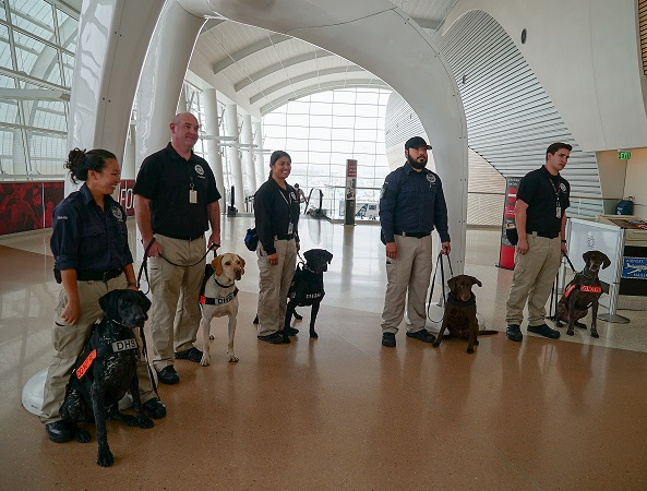 , TSA highlights role working canines play in security operations at SJC, Buzz travel | eTurboNews |Travel News