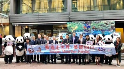 Panda Bear took over Finland with Sichuan tourism promotion