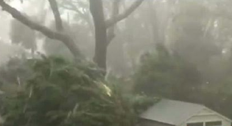Hurricane Michael claims life