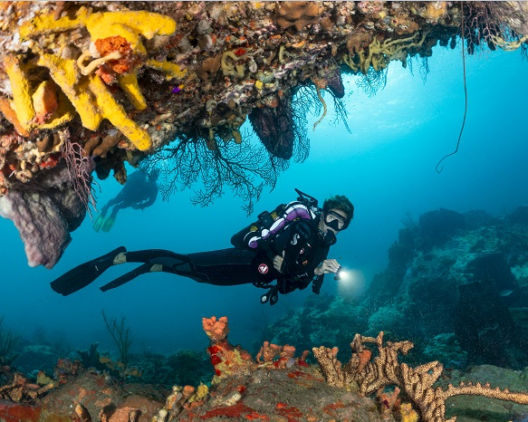 Martinique: The French Caribbean diving destination coming to Las Vegas