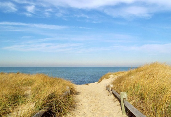 Cape Cod's summer tourism numbers see a steady rise