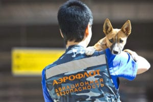 , Aeroflot Registers Own Breed of Sniffer Dogs, Buzz travel | eTurboNews |Travel News