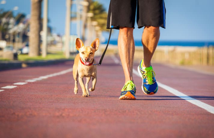 fitness, 12 activities to keep you fit every day, Buzz travel | eTurboNews |Travel News