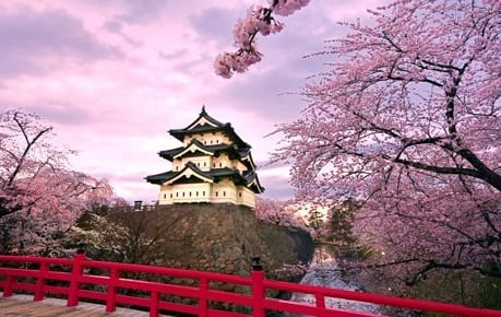 Thomas Cook India: Japan bookings surge 35%