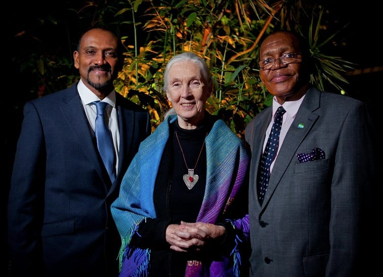 Sierra Leone honors Dr. Jane Goodall, setting stage for tourism debut