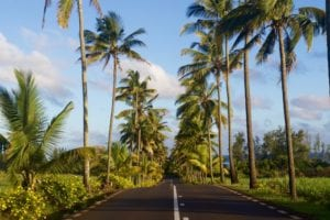 , Visiting Mauritius: What is the best way to rent a car in Mauritius?, TravelWireNews | World News, TravelWireNews | World News