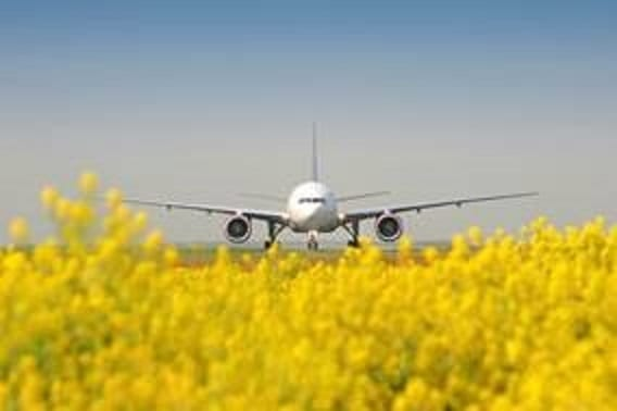 Summer Schedule 2019: Frankfurt Airport puts spring in its step
