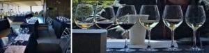 , NY drinks NY wines: History and hybrids, WorldNews | Travel Wire News