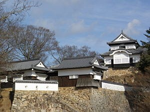 A Japanese castle, Sanjuro the cat, and a remarkable recovery in tourism