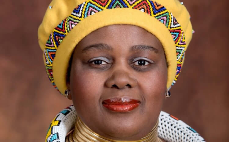 Who is the new Minister of Tourism in South Africa, Nkhensani Kubayi-Nguban?