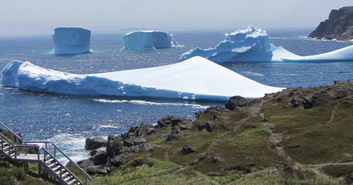 Last chance for tourists to see icebergs in Newfoundland or Labrador?