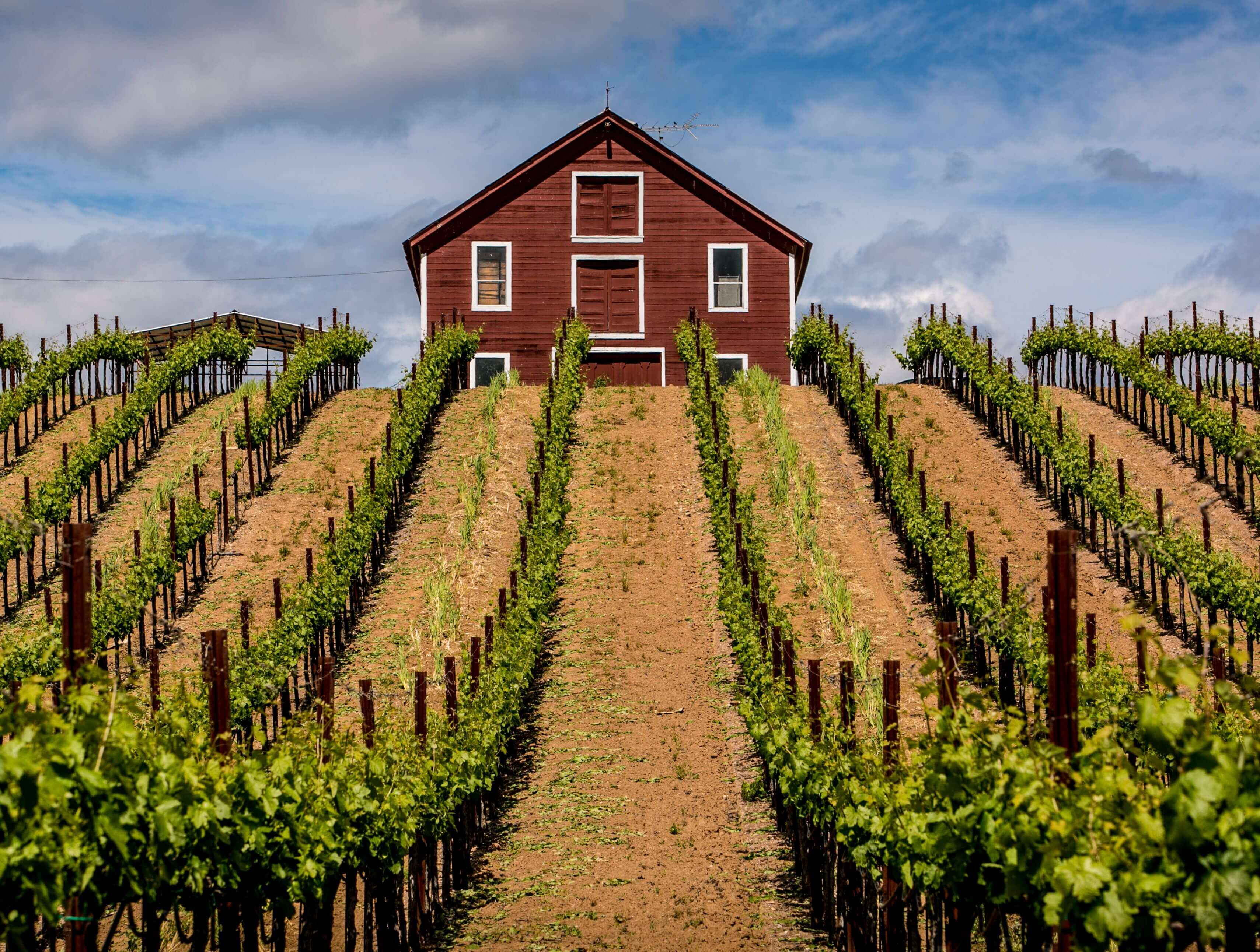 Sonoma Tourism and Kind Traveler launch sustainable tourism initiative