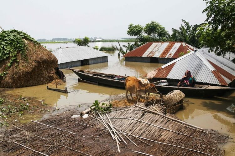 400K forced to evacuate after rivers overflow, submerge villages in Bangladesh