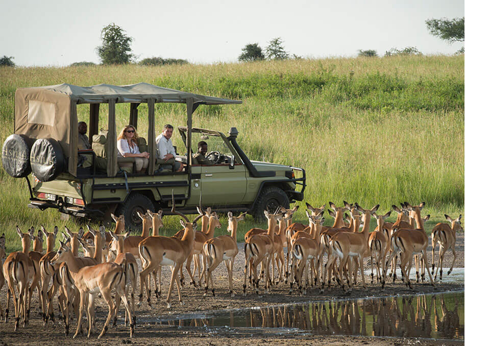Tanzania President directs the split of Selous Game Reserve to form new National Park
