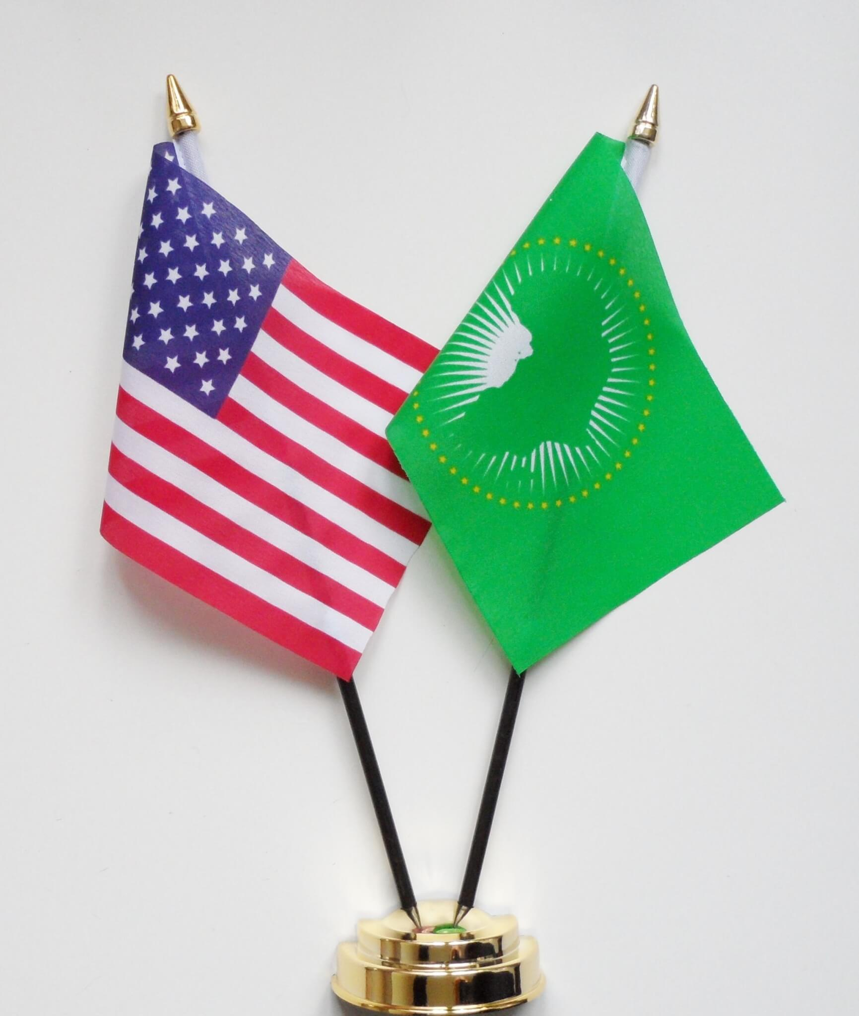 US and African Union: Partnership based on mutual interests and shared values