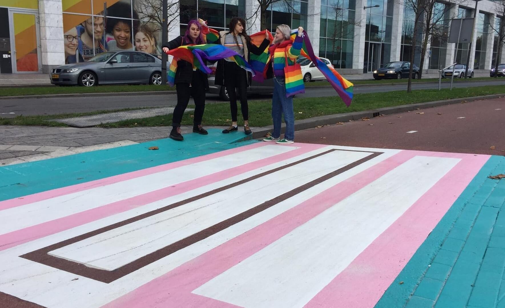 Why? Netherlands' first 'transgender crosswalk' leaves people scratching their heads