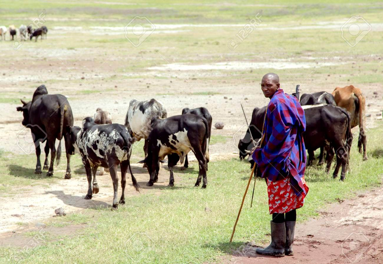 60 years later: Ngorongoro Conservation Area Shall Not Die