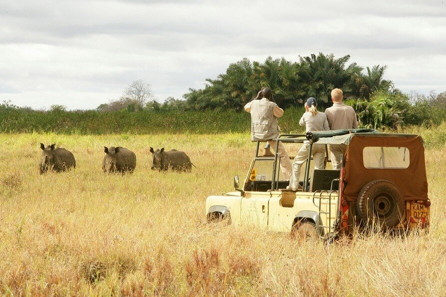 Largest national park in East Africa set in Tanzania