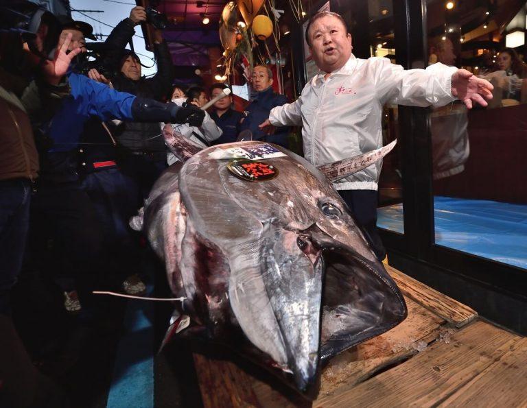 Japan's 'Tuna King' splurges $1.8 million on ONE tuna fish