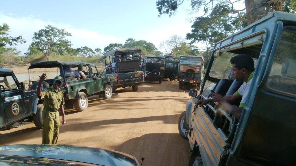 Sri Lanka Wildlife Parks: Post-COVID-19 Operations a New Start?