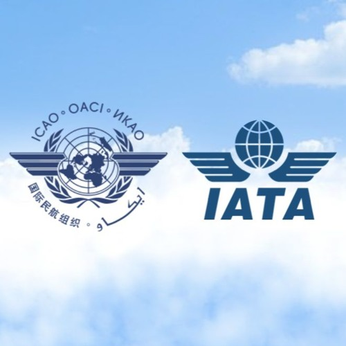 IATA: Urgent implementation of ICAO COVID-19 guidelines needed