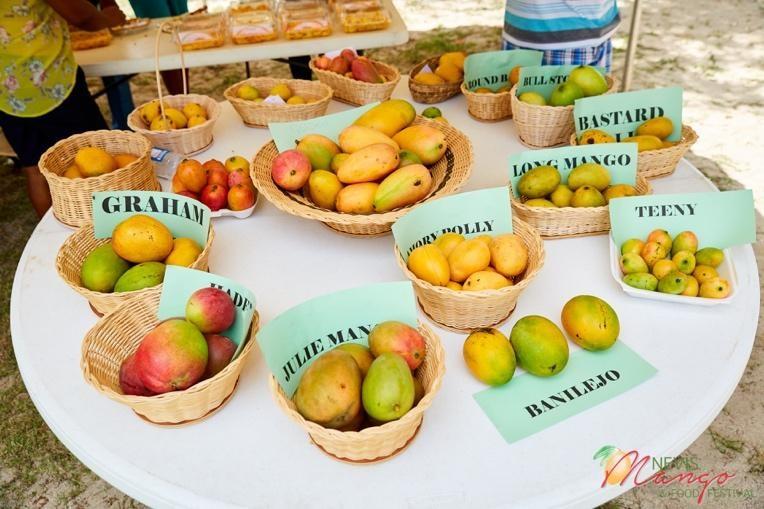 Nevis Mango Festival 2020 Launches Virtual Event