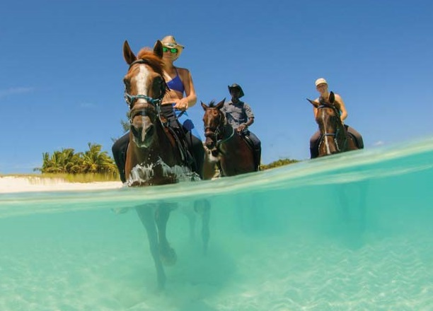 Official Statement from Turks and Caicos Tourism Minister