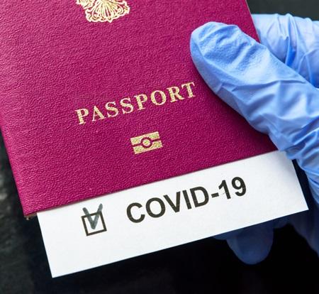 COVID-19 slashes global tourism revenue by $316 billion