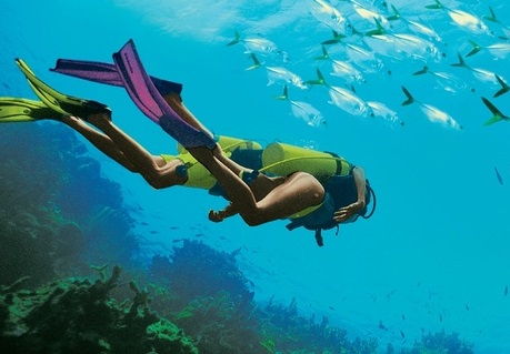 Sandals and Beaches Resorts Receive 9 Diving Awards