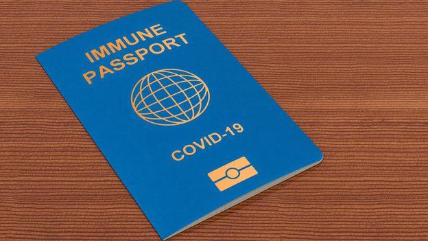 Im 2021 müssen Reisende möglicherweise den Nachweis erbringen, dass sie gegen COVID-19 geimpf sind
